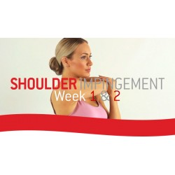 Shoulder Impingement Rehab
